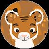 choix delingos tigre 3