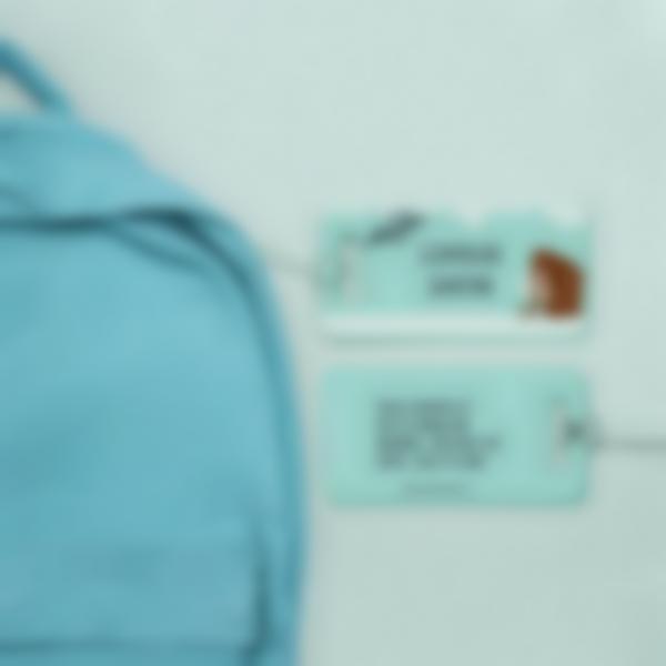 2 etichetta viaggi plastica valigia zaino