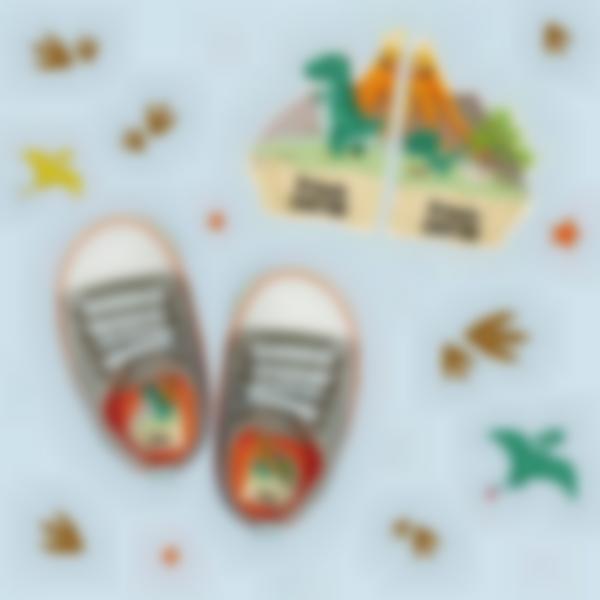 etichette intuitive per scarpe dinosorio 1