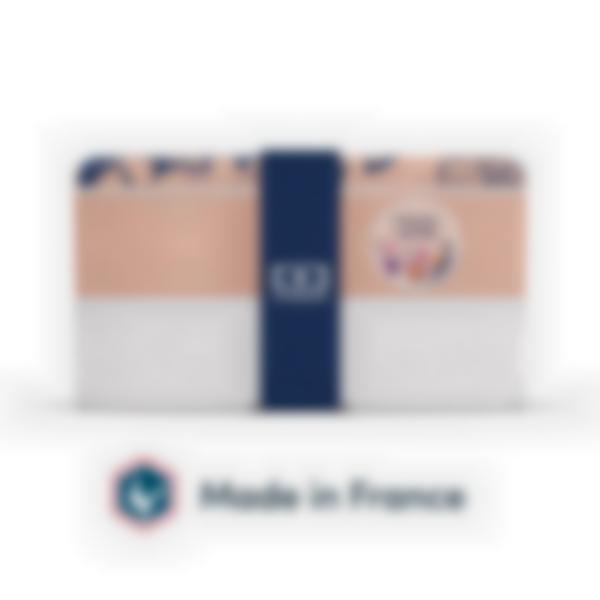 scatola monbento original ginkgo 03