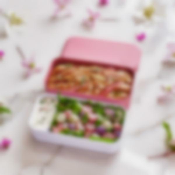 scatola monbento original rosa blush 04
