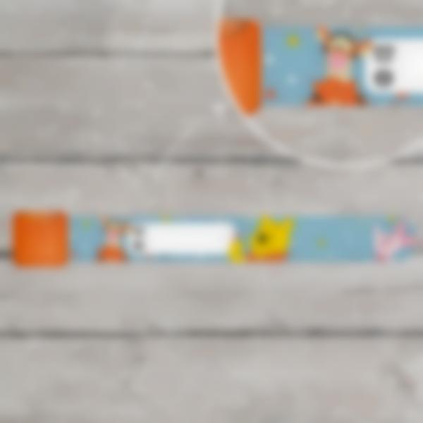 Braccialetti identificativi per bambini - Winnie Disney