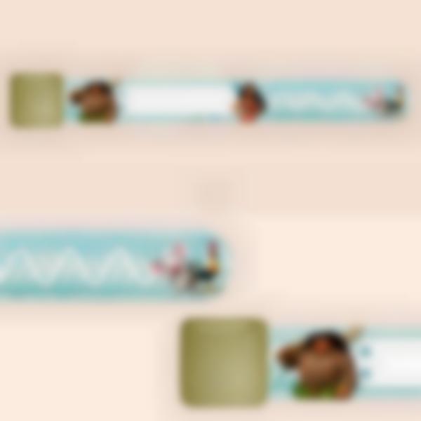 Braccialetto identificativo per bambini - Disney Oceania