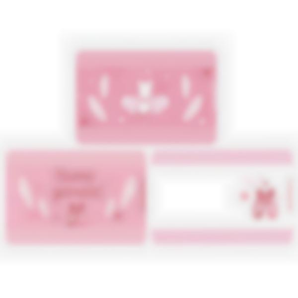 Kit di 3 carte extra per la Ludibox - Porta merenda – Ballerine