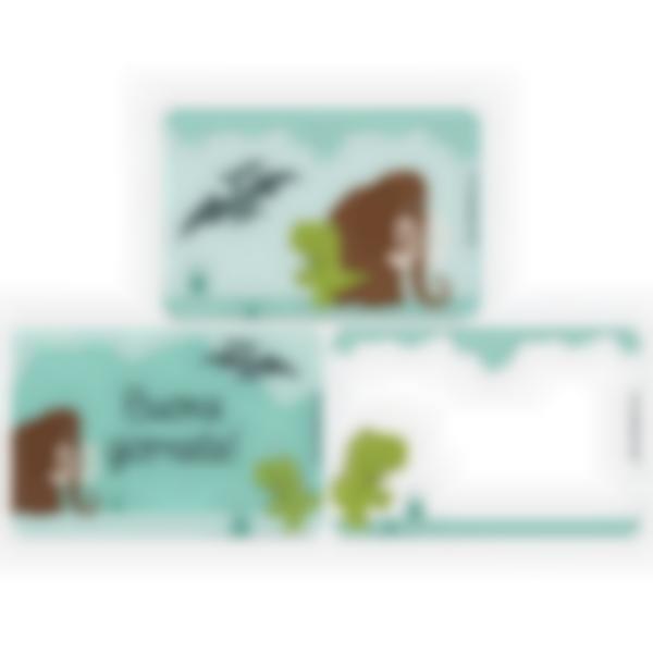 Kit di 3 carte extra per la Ludibox - Porta merenda – Dinosauro